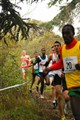Cross International du Val de Marne (3)